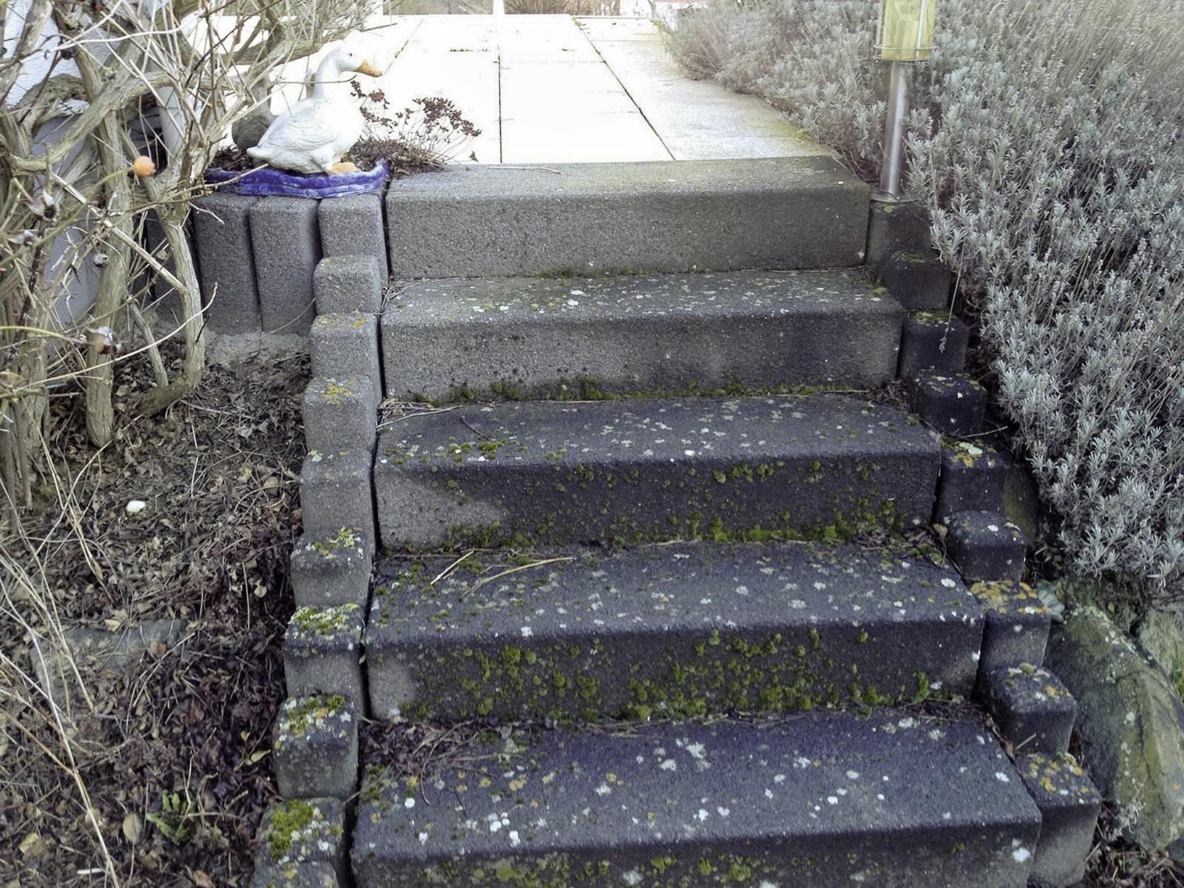 Auf der Außentreppe am älteren Wohnhaus hat sich schon Moos auf den Stufen gebildet.